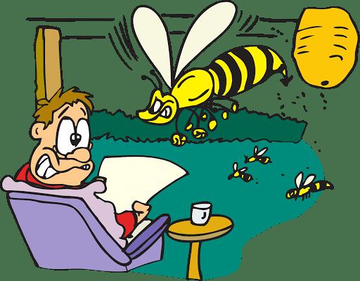 phobies des abeilles guepes