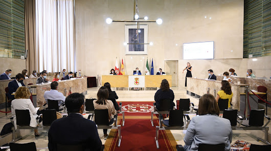 Sesión plenaria en la capital