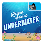 Underwater Sea Life for Kids