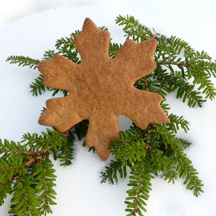 Spice Christmas Cookies