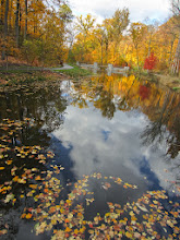 Photo: Autumn colors around and reflected in Dogwood Pond at Hills and Dales Metropark in Dayton, Ohio.