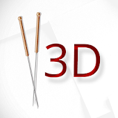 Acupuncture 3D