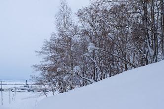 Photo: 北竜町の景色・如月の一