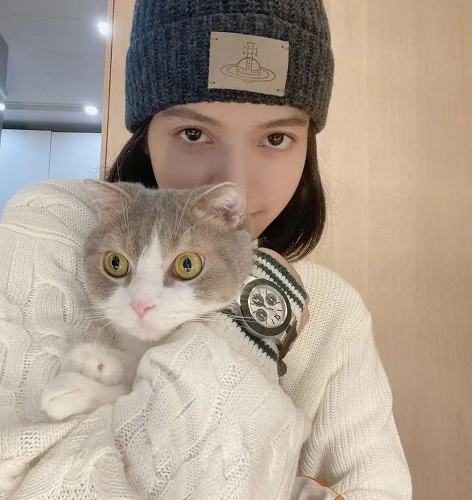 blackpink lisa cat leo lalalalisa_m ig