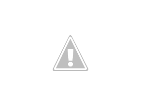 Photo: Grey Fantail