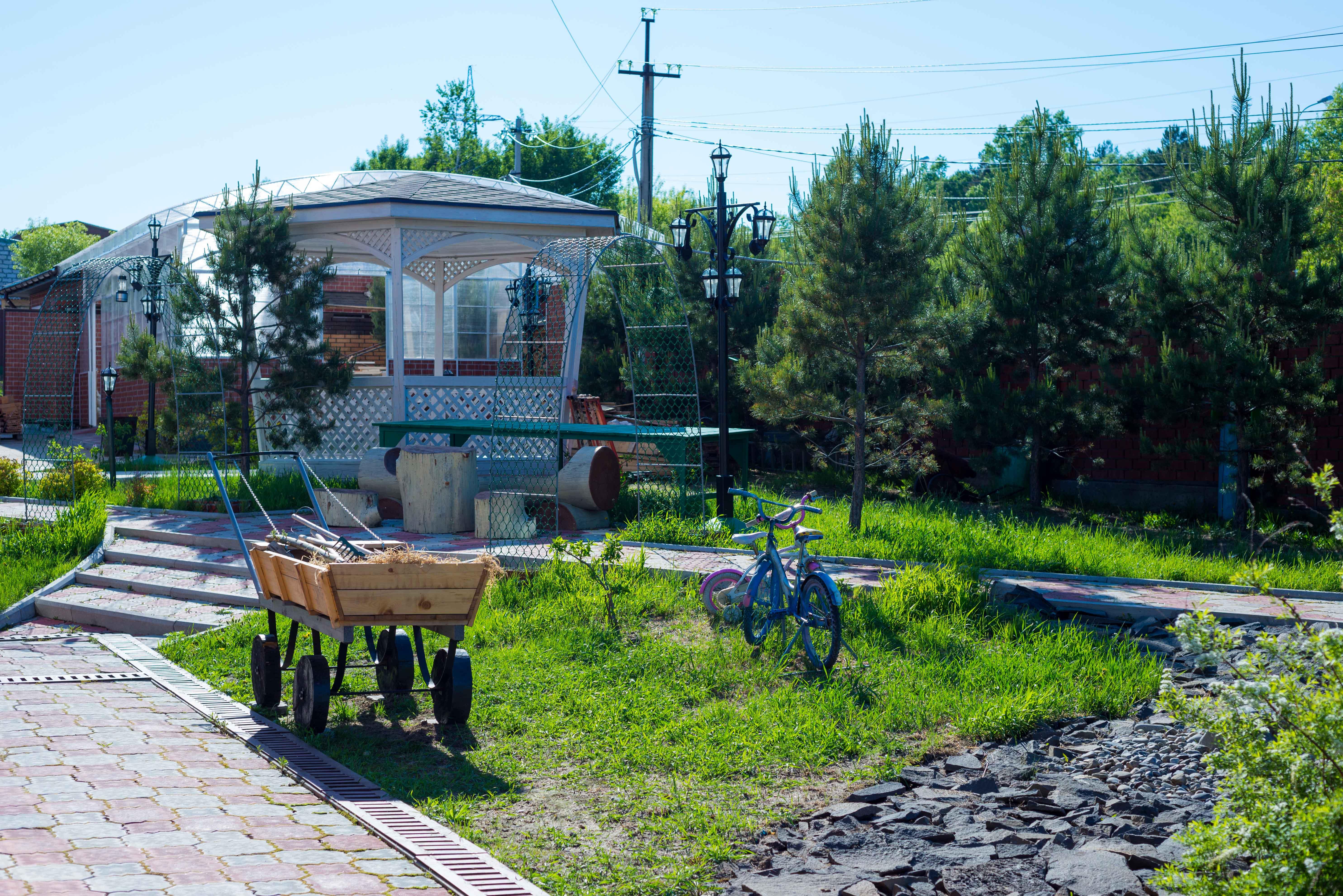 Сокольники в Хабаровске