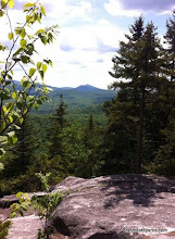 Photo: View from trail in Big Deer State Park