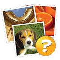 4 Pics 1 Word: More Words icon
