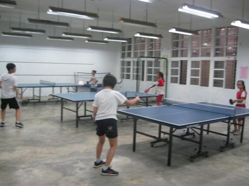 桌球夏令營