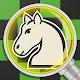 Chess legacy: Play like Capablanca for PC-Windows 7,8,10 and Mac