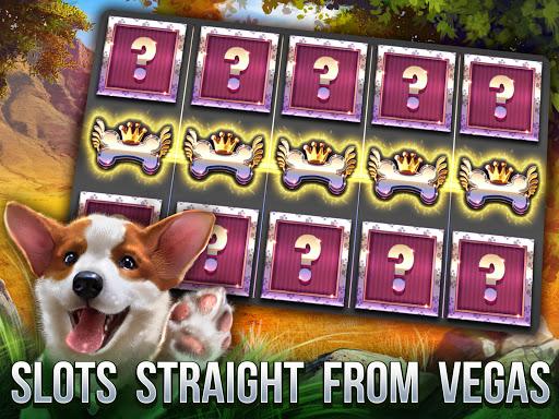 Cats Slot Machines modavailable screenshots 14