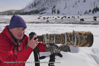 Photo: Andreas on the back so the Madison river. Yellowstone National Park.
