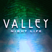 Valley Night Life