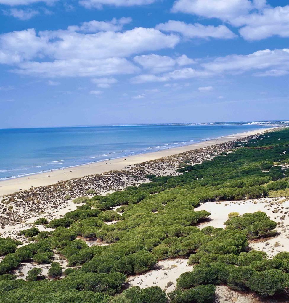 Playa de los Enebrales