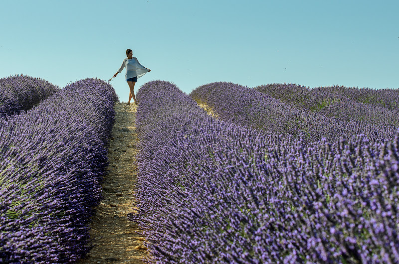 Gio' en Provence! di mapi2019