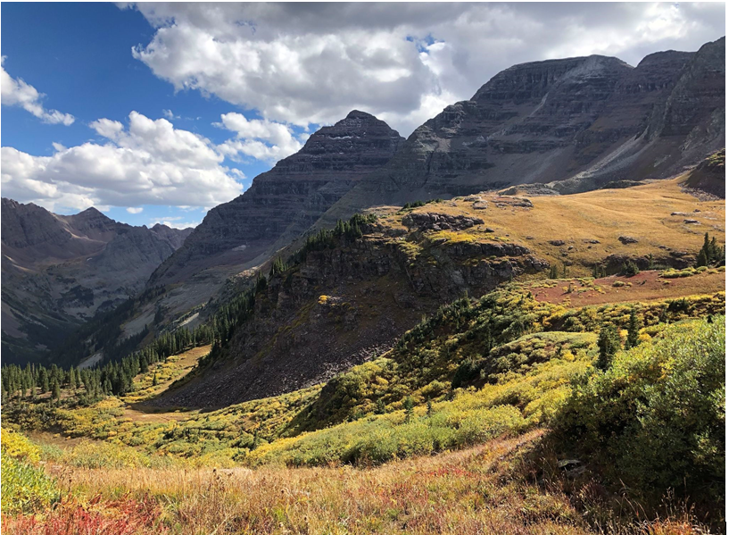 Protecting Bighorn Sheep in the Elk Range of Colorado • The National Wildlife Federation Blog
