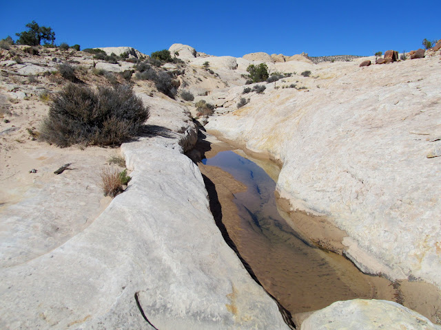 Clear pool in the lower canyon