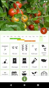 Gardroid – Vegetable Garden 3