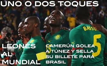 Photo: Camerún vence a Túnez y estará en la fase final del Mundial