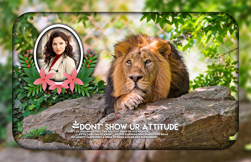 Lion Photo Editor ss2
