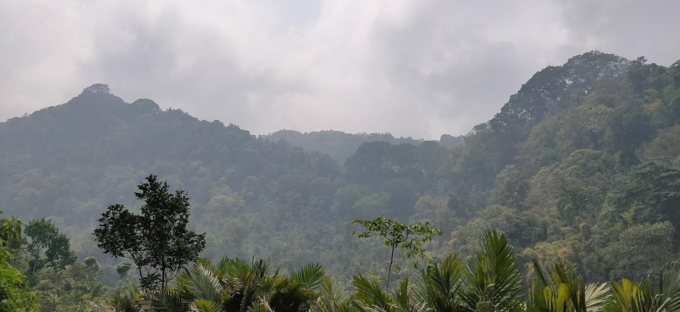 Salah satu sudut pemandangan alam menuju ke Air Terjun Tretes
