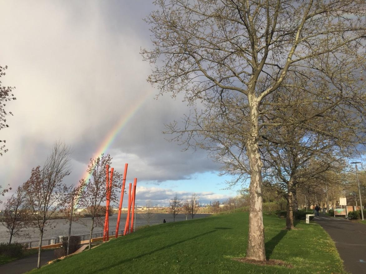 A rainbow shines behind tall sculptural orange sticks in Newark's Riverfront park. The trees in the picture are just starting to bud, it is early spring.