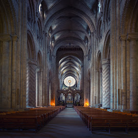 The Rose Window  by Phil Robson - Buildings & Architecture Places of Worship ( durham, rose window, church, religeon, durham cathedral )