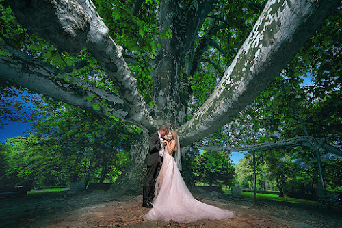 wedding by Dejan Nikolic Fotograf Krusevac - Wedding Bride & Groom ( vencanje, wedding, svadba, bride, groom )