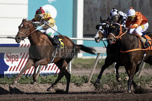 Mayfair Lady (Don Cavallo) gana Handicap (1400m-Arena-CHS).
