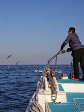 "Photo: 目の前でも、出てますが・・・""タケウチさん""、鳥は釣らない様に。"