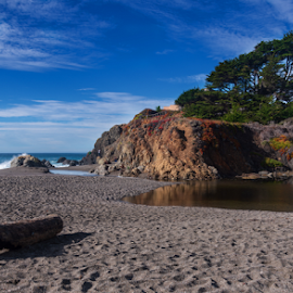 One of my Favorite Bodega Bay Beaches by Jeanine Akers - Landscapes Beaches ( sand, blue sky, log, pacific ocean, beach, california, clouds, bodega bay, trees )