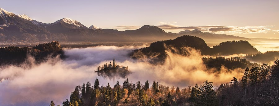 Church on the Island in Misty Sunrise by Aleš Krivec - Landscapes Weather ( water, reflection, church, beautiful, white, forest, lake, architecture, reflecting, island, mountains, winter, tree, nature, fog, bled, castle, mist )