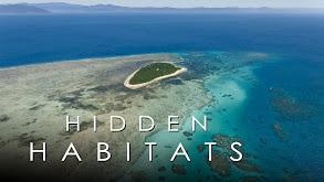 Hidden Habitats thumbnail