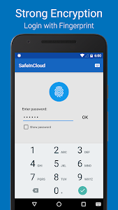 Password Manager SafeInCloud screenshot 0