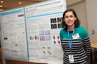 "Photo: Dr Marina Carpinelli, ""Ets1+/-;Fli1+/- mice model aspects of Jacobsen's Syndrome"""