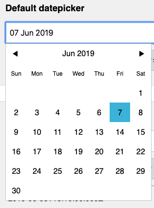 Vuejs-datepicker