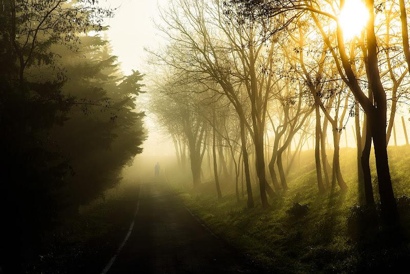 Passeggiata fra le nebbie mattutine di alagnol