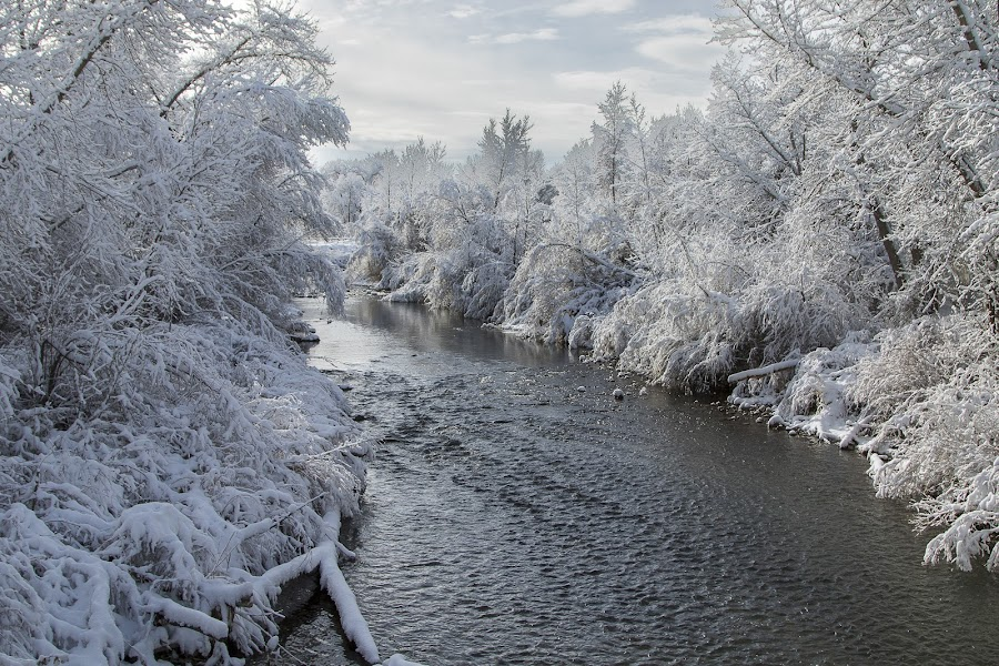 The morning after by Karin Bennett - Landscapes Weather ( winter, cold, ice, snow, storm, river )
