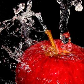 Apple Fresh by Premkumar Antony - Food & Drink Fruits & Vegetables