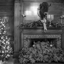 Vanderbilt Mansion at Christmas by Debbie Quick - Black & White Objects & Still Life ( poinsetta, debbie quick, holidays, vanderbilt mansion, tree, decorations, christmas, fireplace, debs creative images, lights )
