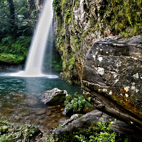 Waterfall by Cristobal Garciaferro Rubio - Nature Up Close Rock & Stone ( water, lagoon, wood, jungle, waterfall, forest, leaves )