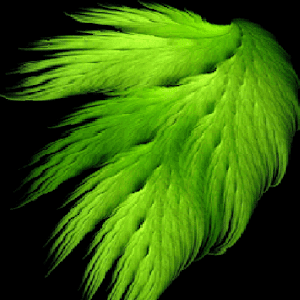 Green Feather Wind LWP apk