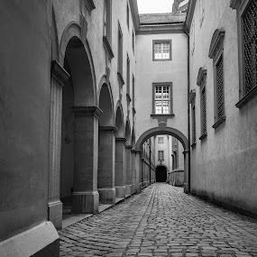MMPI_20150519_MMCK0057_0108 by Mick McKean - City,  Street & Park  Street Scenes ( building, arch, low angle, 4 where (locations), architecture, melk, material, alley, holiday, 2 what (objects), materials, component, family, alleyway, melk abbey, archway, lower austria, austria, cobblestone )