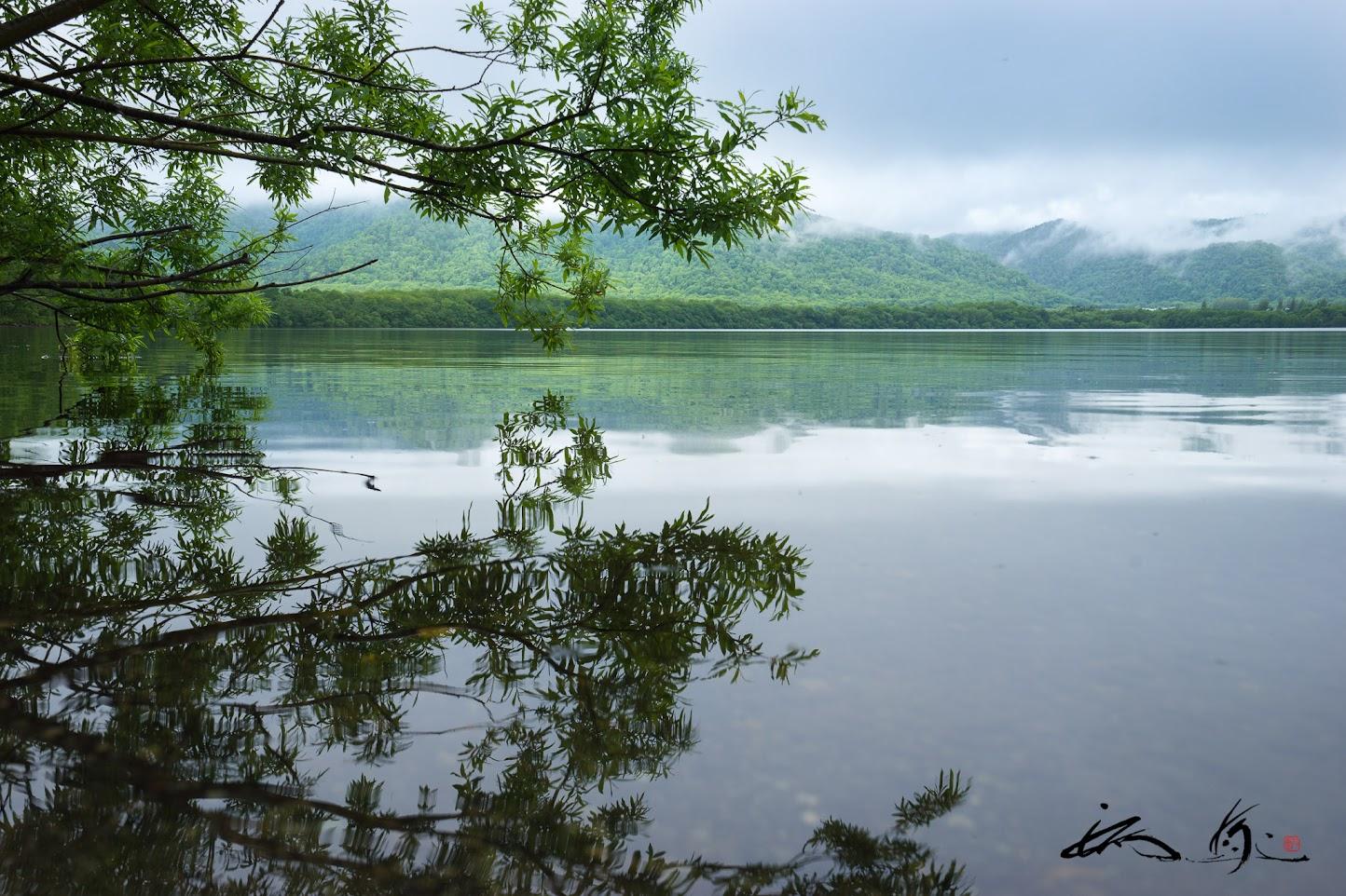 目の前に広がる静寂な屈斜路湖