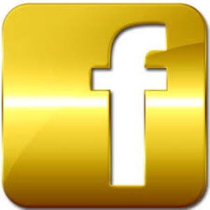 Download FB GOLD APK latest version 1 0 for android devices