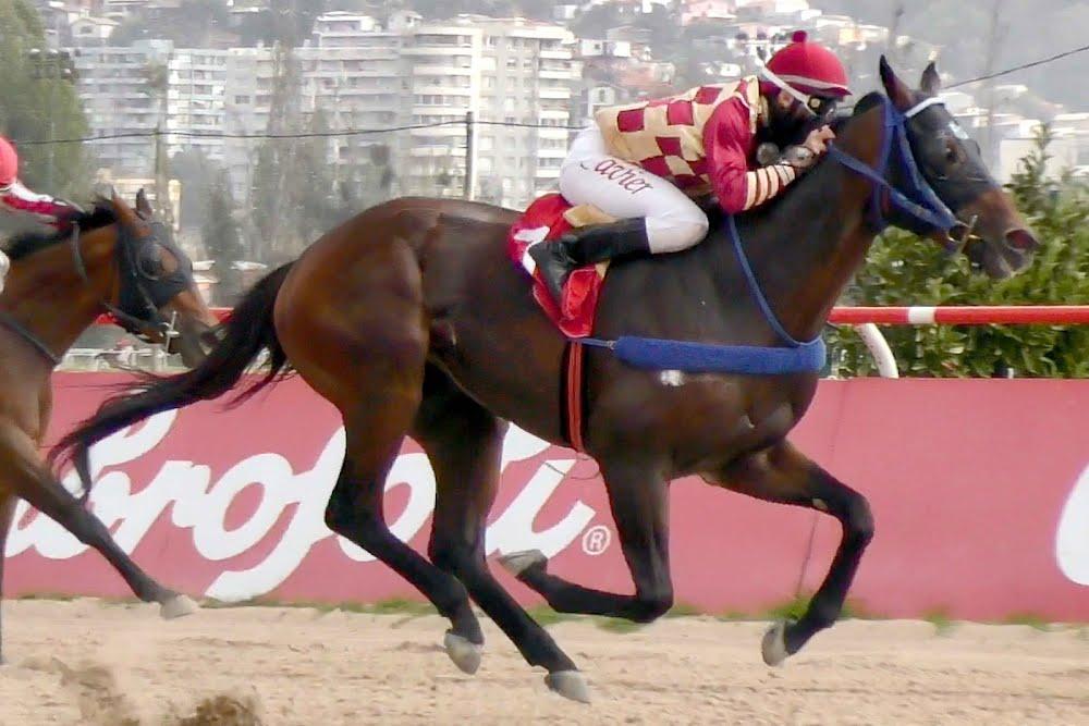 Super Tete (Dangerous Midge) se adjudicó Handicap (1100m-Arena-VSC).
