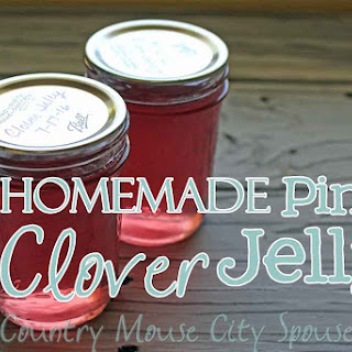 Homemade Pink Clover Jelly