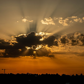 by Seb Mih - Landscapes Sunsets & Sunrises ( plane, sunrise, sunlight, clouds, rays )