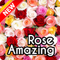 Beautiful Rose Wallpaper icon