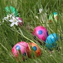Easter Eggs Wallpapers HD FREE icon